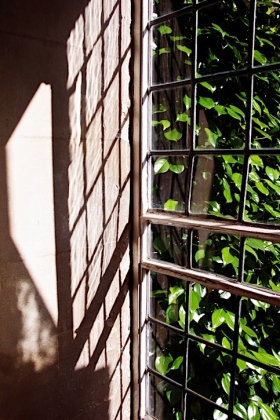 RJ-Interiors-Windows-082