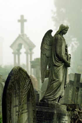Angels & Statues