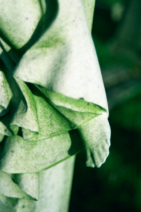 RJ-Angels-and-Statues-005
