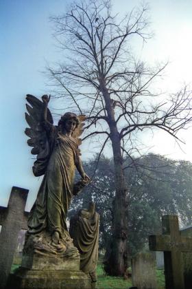 RJ-Angels-and-Statues-006