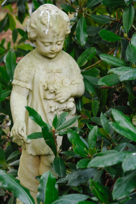 RJ-Angels-and-Statues-058