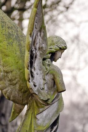 RJ-Angels-and-Statues-060