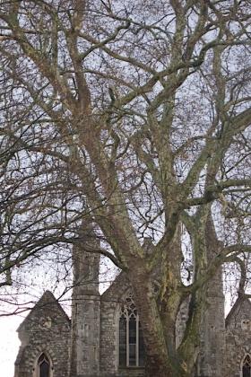 RJ-Exteriors-churches & abbeys-021