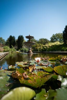 RJ-Gardens-and-Parks-004