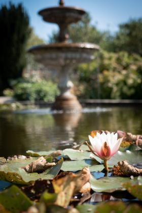 RJ-Gardens-and-Parks-005