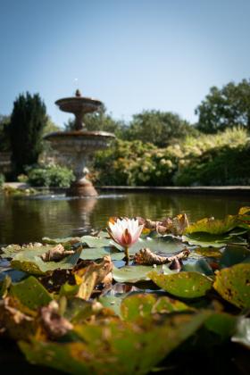 RJ-Gardens-and-Parks-030