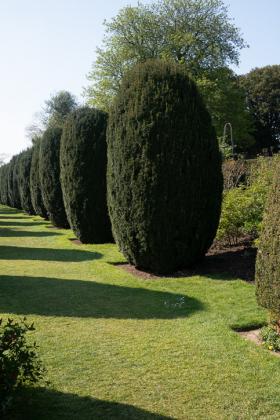 RJ-Gardens-and-Parks-045