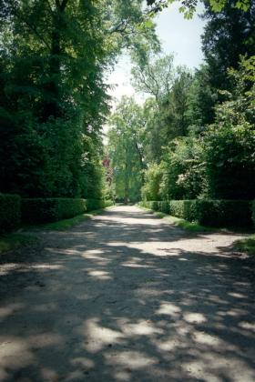 RJ-Gardens-and-Parks-084