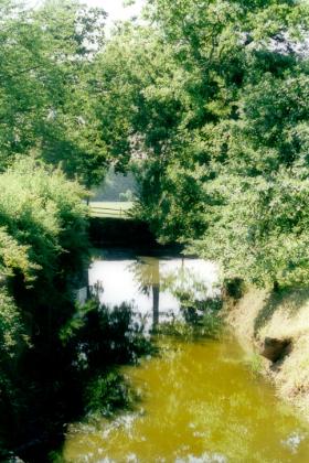 RJ-Gardens-and-Parks-085
