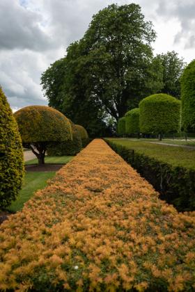 RJ-Gardens-and-Parks-103