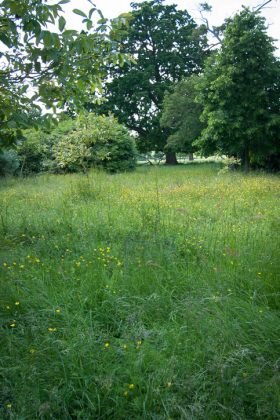 RJ-Gardens-and-Parks-159