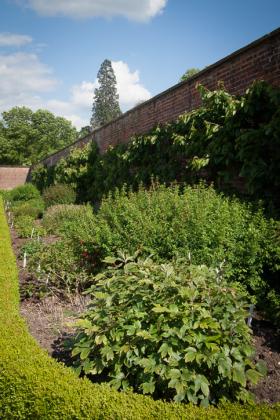 RJ-Gardens-and-Parks-161