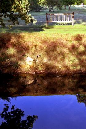 RJ-Gardens-and-Parks-166