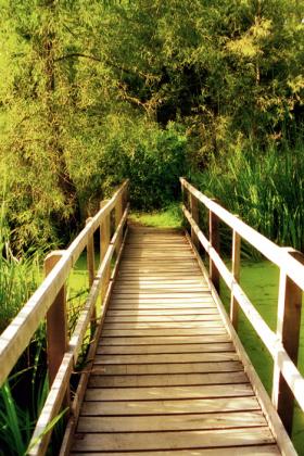 RJ-Gardens-and-Parks-172