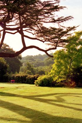 RJ-Gardens-and-Parks-177
