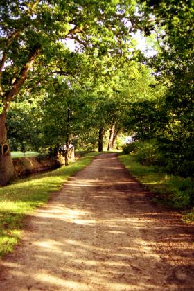 RJ-Gardens-and-Parks-180