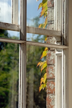 RJ-Interiors-Windows-076